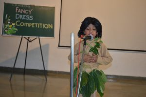 Fancy Dress Competition – Pre-Primary Section
