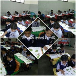 Activities @ Pre-Primary Section